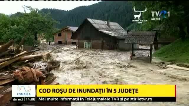 Romania sub ape - Holzindustrie Schweighofer sa traiasca!